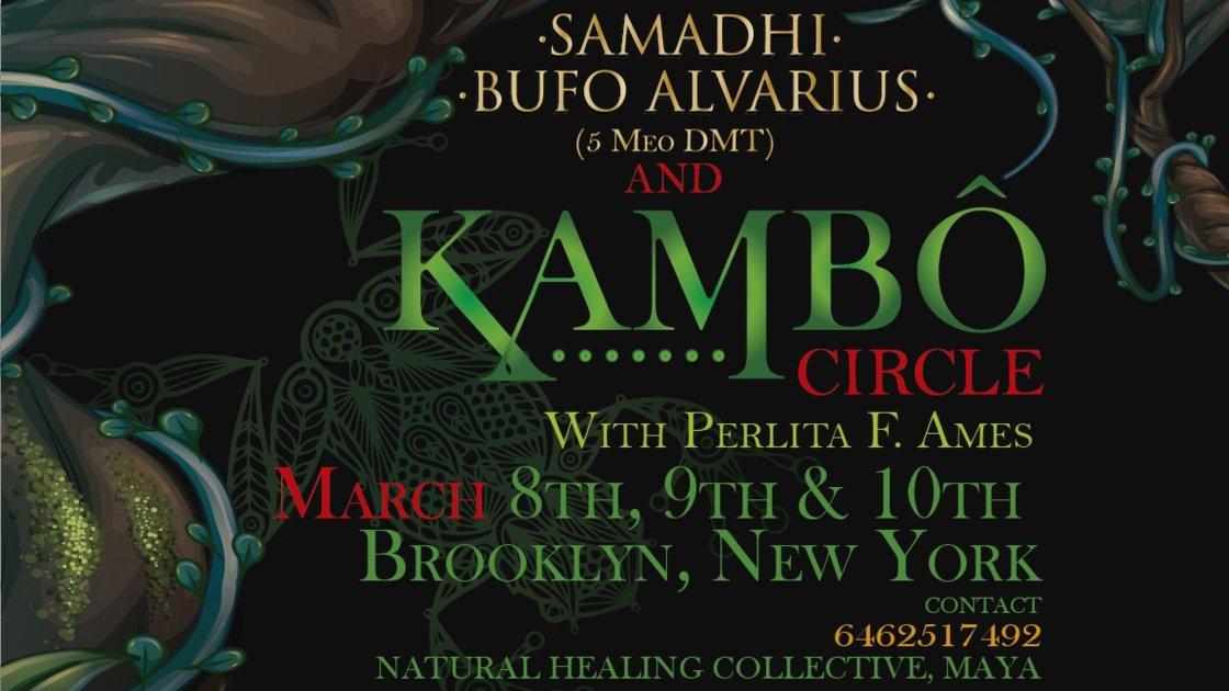 Sacred Medicine Kambó w/Perlita Ames