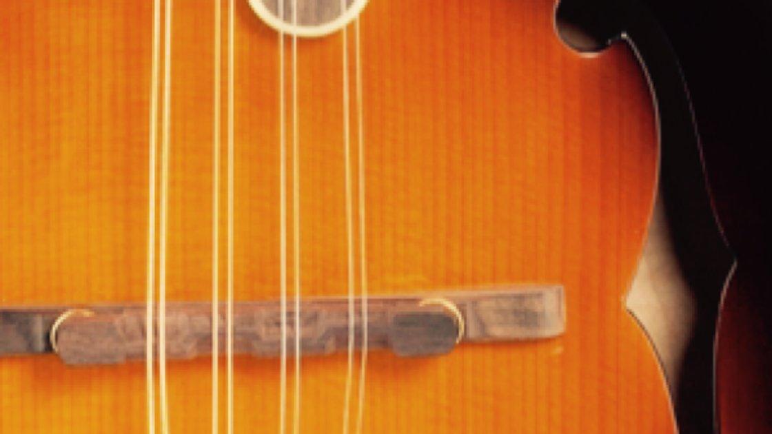 Private Mandolin Lessons