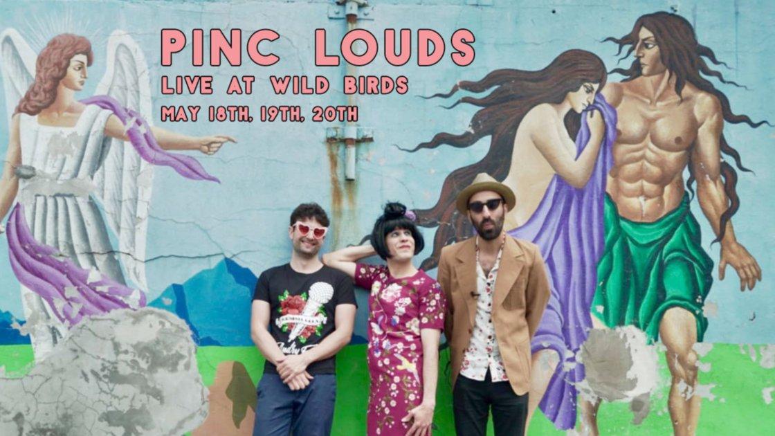 Pinc Louds Live at Wild Birds (Wednesday)