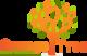 Orange Tree Yoga Studio