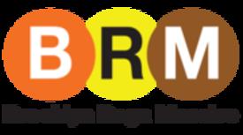 Brooklyn Raga Massive Education