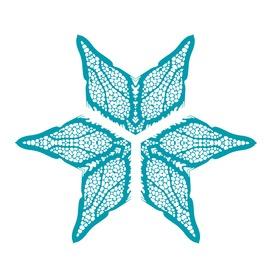 Coralitionstar blue